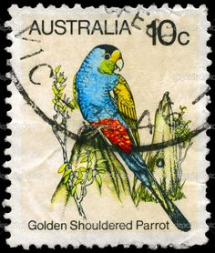 Australia's 10c postage stamp depicting a Golden Shouldered Parrot.