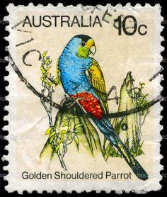 Australias 10c postage stamp depicting a Golden Shouldered Parrot.