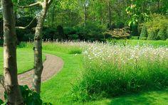 bloemenweide in tuin Outdoor Gardens, Golf Courses, Country Roads, Outdoor Stuff, Landscape, Plants, Park, Google, House