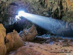 La ciencia está a tu alrededor: Cueva Lirio de Mona | Ciencia Puerto Rico