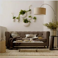 Wall planters for inside