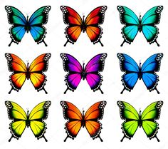 Illustration of Collection of colorful butterflies, flying in different directions. vector art, clipart and stock vectors. Butterfly Drawing, Butterfly Painting, Butterfly Wallpaper, Butterfly Crafts, Butterflies Flying, Beautiful Butterflies, Orange Butterfly, Art Plastique, Portrait