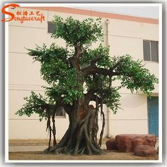 https://www.alibaba.com/product-detail/Customized-decorative-artificial-ficus-leaves-tree_60262930968.html?spm=a2747.manage.0.0.IEtK4C