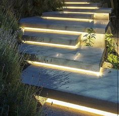 Betonplatten asymmetrisch velegt mit LED Beleuchtung Stairs and lighting love it Shelly Water feature and exterior lighting designed by Paver Planet Inc 10 Outdoor Lighti. Landscape Lighting, Outdoor Lighting, Outdoor Decor, Lighting Ideas, Pathway Lighting, Landscape Architecture, Landscape Design, Landscape Stairs, Architecture Design