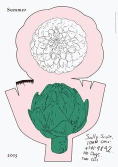 Graphics | Sally Scott