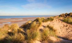These UK nature sites, from a new book, Wild and Free, offer abundant wildlife within an hour's drive of a city or town, making them perfect for a day trip Best Uk Beaches, British Beaches, Castle House, White Horses, Nature Reserve, Sandy Beaches, Day Trip, Places To See, Wildlife