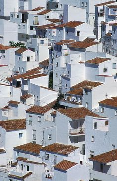 Casares, Spain ***  curreyuk The distinctive white painted houses of Casares as seen from the castle.