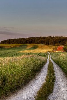 At the end of the road by Kim Schou (Ravnsby Bakker, Denmark)