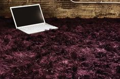 Chandra - Celecot - Purple Shag Area Rug Oh!