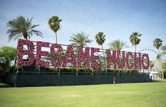 Besame Mucho at Coachella, Courtesy Goldenvoice.