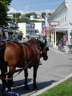 Mackinac Island - My kind of place, no cars on the whole island, just horses and bikes.