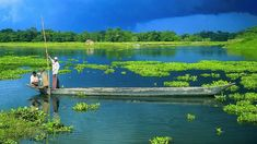 majuli river island - Google Search Indian Army, Beauty Hacks Video, Nature Images, Naturally Beautiful, Source Of Inspiration, Beautiful Places To Visit, India Travel, Incredible India, Tourism