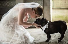 Super sweet couple had a small intimate wedding at the Maitland Art Center that included wonderful friends and family. Their French bulldog even took part in the ceremony! See more here: https://www.thecanovasphotography.com/maitland-art-center-wedding-maitland-florida/