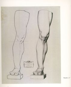 A spectacular fuck-ton of human leg references. Sourced by no15201: http://anatomy4sculptors.com/?menu=12&sub=25 http://call0ps.deviantart.com/art/Anatomy-Study-leg-muscules-79205185 人物を描く基本 使える美術解剖図...