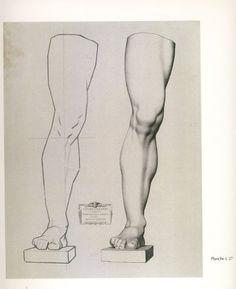 A spectacular fuck-ton of human leg references. Sourced by no15201: http://anatomy4sculptors.com/?menu=12&sub=25 http://call0ps.deviantart.com/art/Anatomy-Study-leg-muscules-79205185 人物を描く基本 使える美術解剖図...