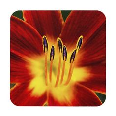 Desire Hard Plastic Coasters with cork back. #coasters #flowers #nature