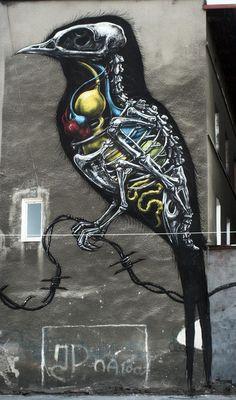 ROA: Street Artist. #roa http://www.widewalls.ch/artist/roa/