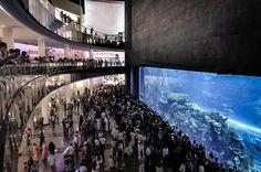 Dubai Mall Aquarium  Dubai Shopping Mall #Enjoy the #luxury of #Dubai #shopping #UAE #Travel #Tourism #Fun #MiddleEast