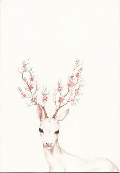 flowers, deer, and animal image