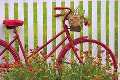 A little art in the garden....