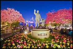 One More Disney Day- amazing lighting and flowers