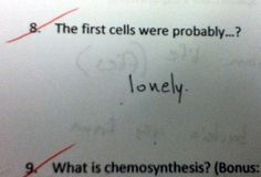 Awesomely Fun Incorrect Test Answers From Kids: The First Cells | Hotimgs