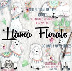 Llama Florals Digital Clipart