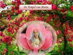 JEZUS en MARIA Groep.: ROL VAN MARIA IN DE HEILSGESCHIEDENIS