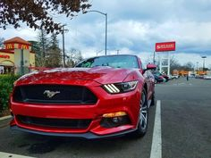 Nice day! Kind of! #Mustang #usedcar #car #cars