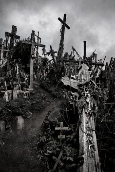 Hill Of Crosses ~ Lithuania ~ By: Luís Gonzaga Batista