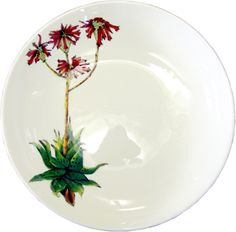 Aloe Bush Pot Bowl in firey red and fresh green offset on a crisp white background - ideal for summer salads or fruit.
