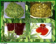 Smrkový med ze samoty u lesa Natural Medicine, Seaweed Salad, Palak Paneer, Kimchi, Guacamole, Green Beans, Cabbage, Health Fitness, Homemade