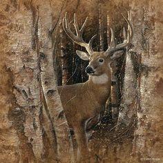 «Ο άνθρωπος δεν είναι απ' τη φύση του άγριος ή αντικοινωνικός, αλλά γίνεται τέτοιος, παρά φύση, χρησιμοποιώντας την κακία. Και σ' αυτή όμως την περίπτωση μπορεί να γίνει καλύτερος, αν αλλάξει περιβάλλον και ζωή, όπως τα άγρια θηρία που είναι απ' τη φύση τους άγρια, χάνουν την αγριότητά τους αν με κατάλληλο τρόπο τα εξημερώσουμε.»  Πλούταρχος
