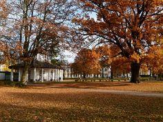 Herbstliche Malreise an die Ostsee | Weißer Pavillon auf dem herbstlichen Kamp (c) FRank Koebsch (3)