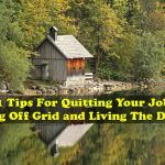 21 Tips For Quitting Your Job, Going Off Grid and Living The Dream Deep Well Pump, A Frame Cabin Plans, Arched Cabin, Building A Cabin, Go Off, Cheap Houses, Container House Design, Quitting Your Job, Off The Grid