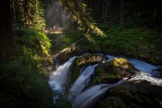15 Things Everyone MUST DO In Washington In 2016  9. July: Go for an unforgettable hike to see Sol Duc Falls.