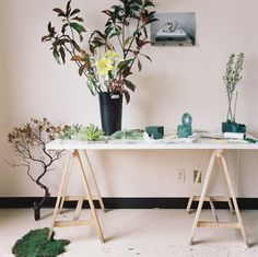 Camille Henrot - Ikebana (for The White Review, No. 5)