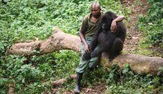 Hablamos con el fotógrafo que tomó la imagen en un orfanato de gorilas durante el conflicto bélico del M23 en el Congo.