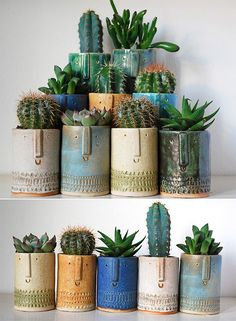 Succulent Plants For An Easy Indoor Garden - - The best way to add freshness to your lovely interiors is by adding some touch of real lush green plants. Succulent Plants are now often used as indoor garden plants, let's lookup them. Cacti And Succulents, Planting Succulents, Potted Plants, Cactus Plants, Indoor Plants, Planting Flowers, Indoor Cactus, Cactus Art, Garden Plants