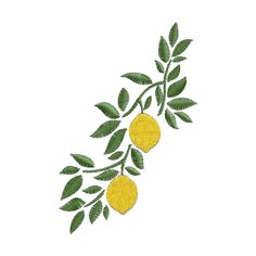 Embroidery On Kurtis, Kurti Embroidery Design, Embroidery Motifs, Abstract Embroidery, Hand Embroidery Flowers, Lemon Art, Flower Tattoo Designs, Fabric Painting, Stitch