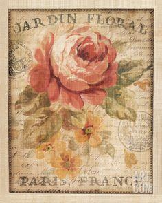 Parisian Flowers II Art Print by Danhui Nai at Art.com