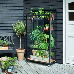 Odlingsvitrin Juliana City Green House - Växthus balkong - Balkongodling