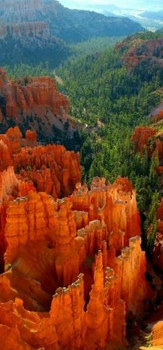 Bryce Canyon in Utah, USA ~