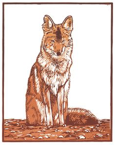 This is a reduction linocut of a coyote. The first colour is hand carved from a block of linoleum and printed. The block is then carved again and