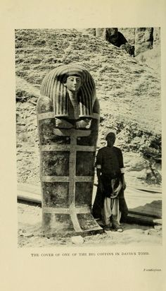 THIS DID NOT COME FROM KV-55.  RECENT RESEARCH LEADS ME TO BELIEVE THAT THIS COFFIN CAME FROM A  REBURIAL IN A NEARBY TOMB, (dating from the 19th or 20th Dynasty) - 1 OF 20 DAVIS 'DISCOVERED'.