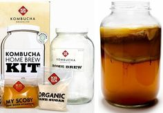 Your diet is largely responsible for your gut health, and when you feed your body the fuel it's designed for, your gut flora will be able to maintain optimal balance, which then supports optimal physical and mental health.  Kombucha is an effervescent fermentation of sweetened tea that is celebrated for its probiotic benefits.