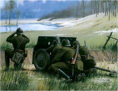 Cañon de infanteria polaco haciendo de antitanque. Polonia, Septiembre 1939. Arkadiusz Wróbel. Más en www.elgrancapitan.org/foro/