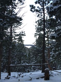 Helena Mountain Cabin