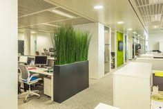 Open Space design by Cléram.   #style #design #bureau #architecture #aménagement #workspace #coolworking #interior #deco #Cléram #art #office #idea #conception #company #openspace #modern #plant #plante #vert #green #murvegetal #mur #vegetal #entreprise