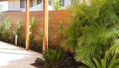 How to transform your backyard with DIY Landscape Screens! - Sustain Outdoors